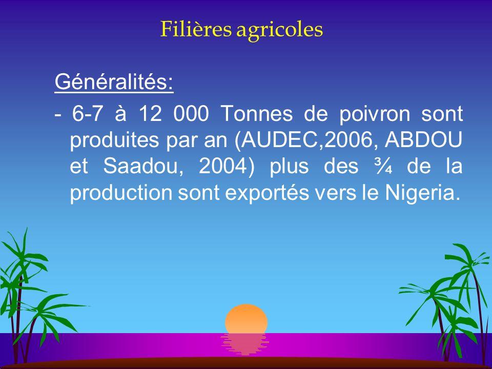Filières agricoles Généralités: - 6-7 à 12 000 Tonnes de poivron sont produites par an (AUDEC,2006, ABDOU et Saadou, 2004) plus des ¾ de la production