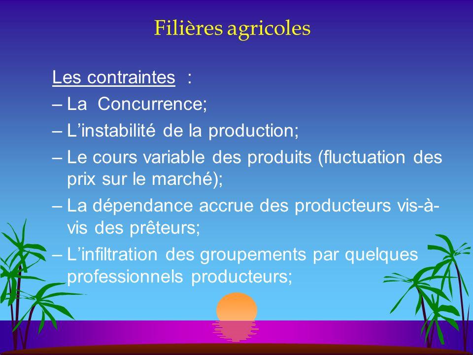 Filières agricoles Les contraintes : –La Concurrence; –Linstabilité de la production; –Le cours variable des produits (fluctuation des prix sur le mar