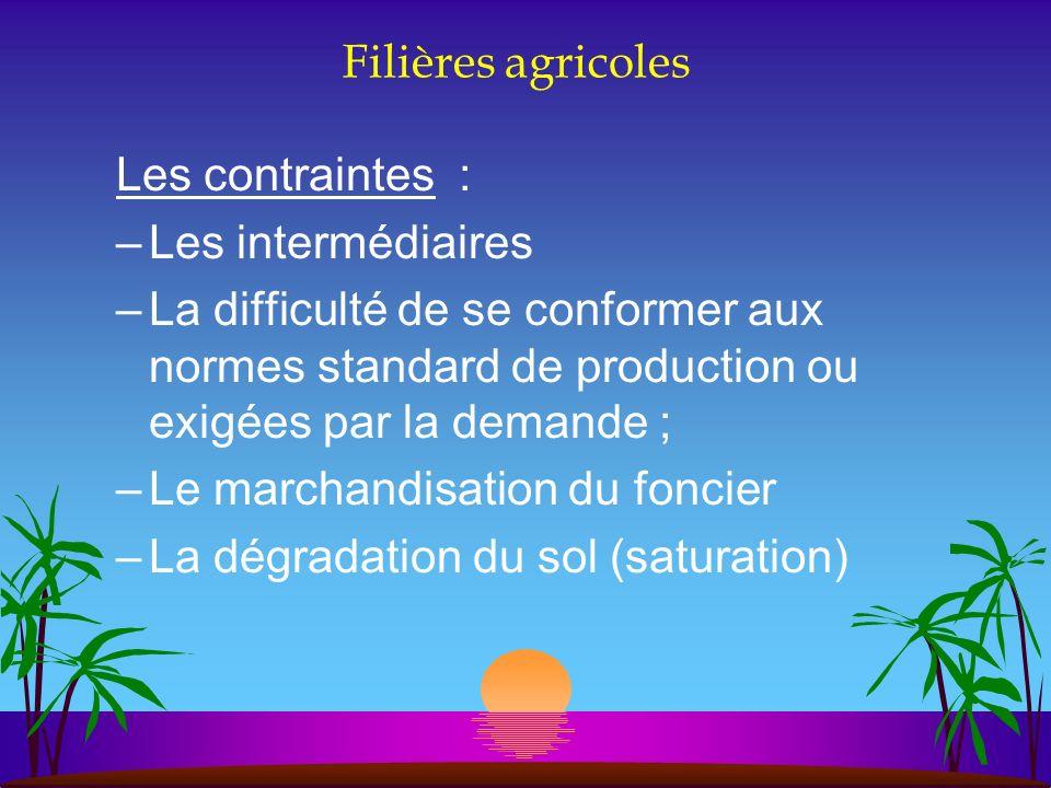 Filières agricoles Les contraintes : –Les intermédiaires –La difficulté de se conformer aux normes standard de production ou exigées par la demande ;