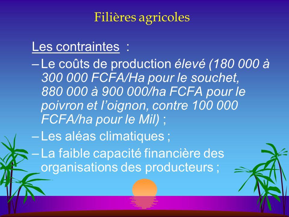 Filières agricoles Les contraintes : –Le coûts de production élevé (180 000 à 300 000 FCFA/Ha pour le souchet, 880 000 à 900 000/ha FCFA pour le poivr