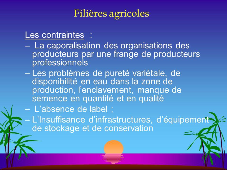 Filières agricoles Les contraintes : – La caporalisation des organisations des producteurs par une frange de producteurs professionnels –Les problèmes