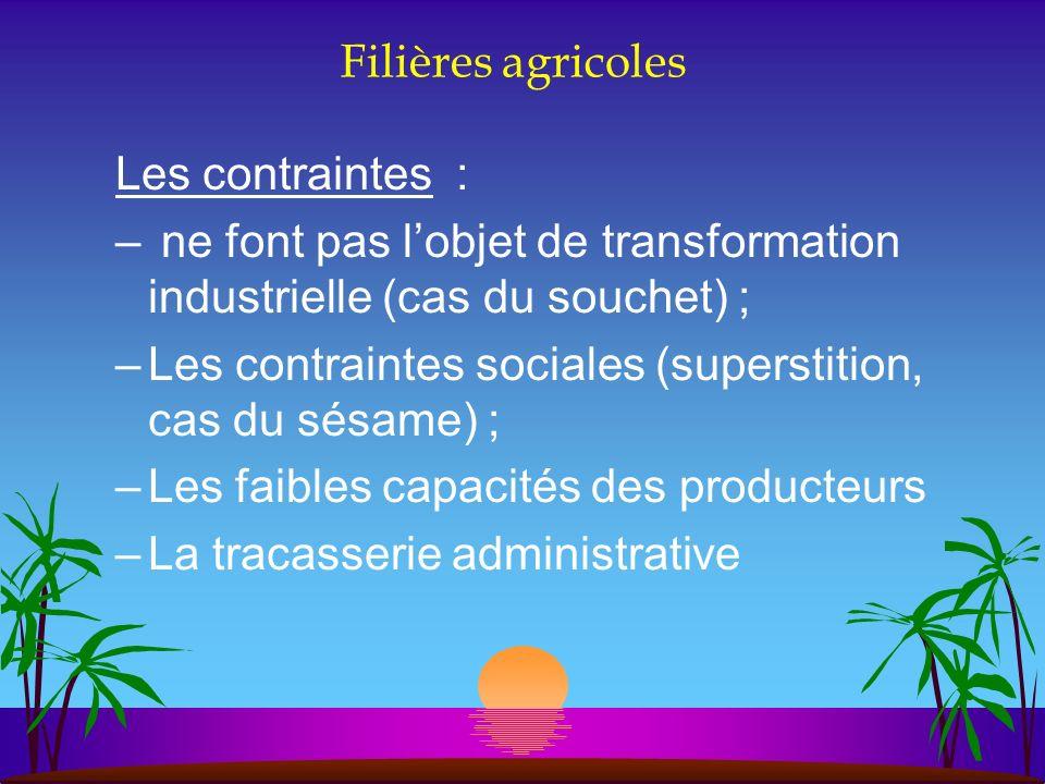 Filières agricoles Les contraintes : – ne font pas lobjet de transformation industrielle (cas du souchet) ; –Les contraintes sociales (superstition, c