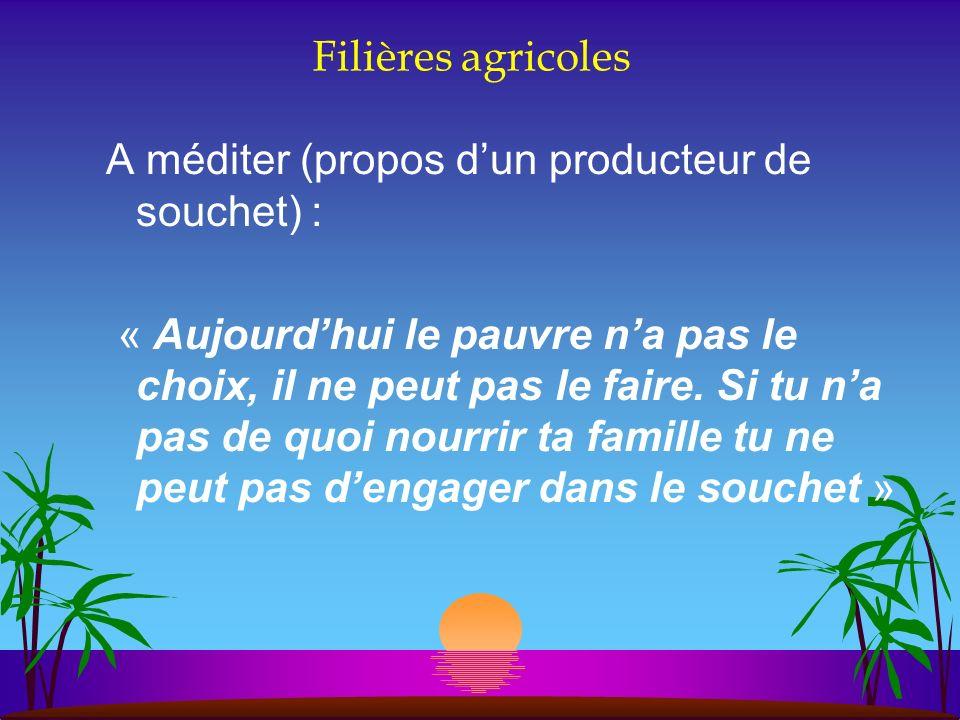 Filières agricoles A méditer (propos dun producteur de souchet) : « Aujourdhui le pauvre na pas le choix, il ne peut pas le faire. Si tu na pas de quo