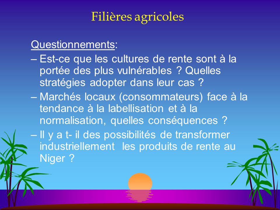 Filières agricoles Questionnements: –Est-ce que les cultures de rente sont à la portée des plus vulnérables ? Quelles stratégies adopter dans leur cas
