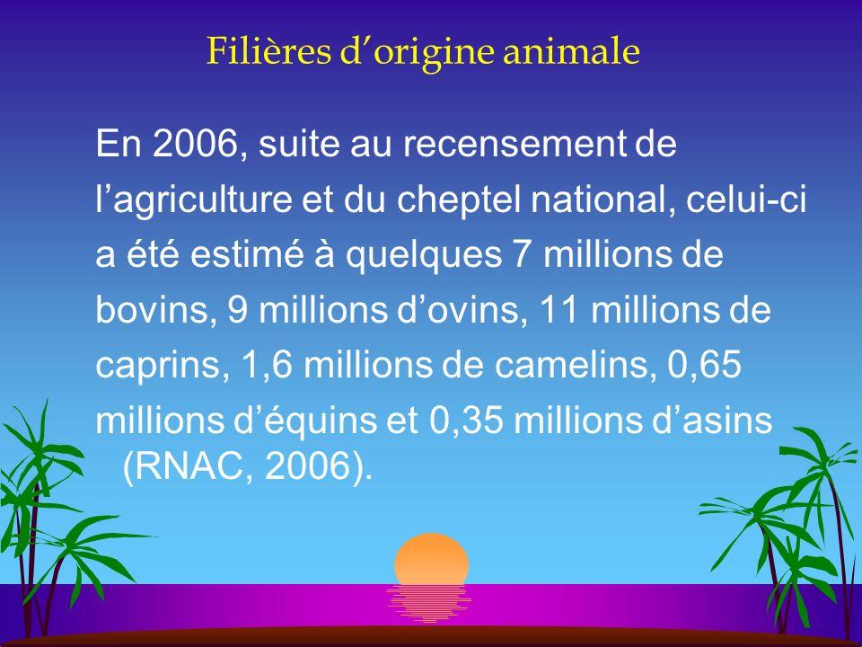Filières dorigine animale En 2006, suite au recensement de lagriculture et du cheptel national, celui-ci a été estimé à quelques 7 millions de bovins,