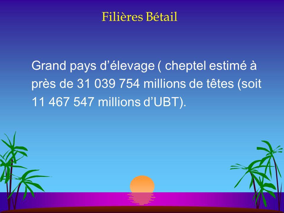 Filières Bétail Grand pays délevage ( cheptel estimé à près de 31 039 754 millions de têtes (soit 11 467 547 millions dUBT).