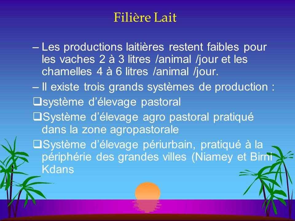 Filière Lait –Les productions laitières restent faibles pour les vaches 2 à 3 litres /animal /jour et les chamelles 4 à 6 litres /animal /jour. –Il ex