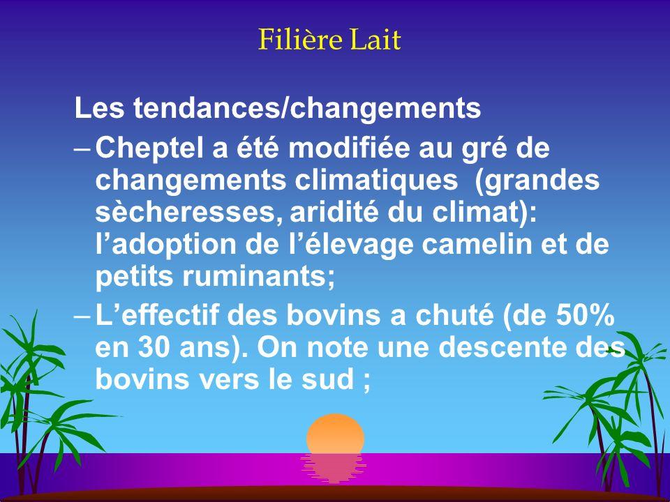Filière Lait Les tendances/changements –Cheptel a été modifiée au gré de changements climatiques (grandes sècheresses, aridité du climat): ladoption d