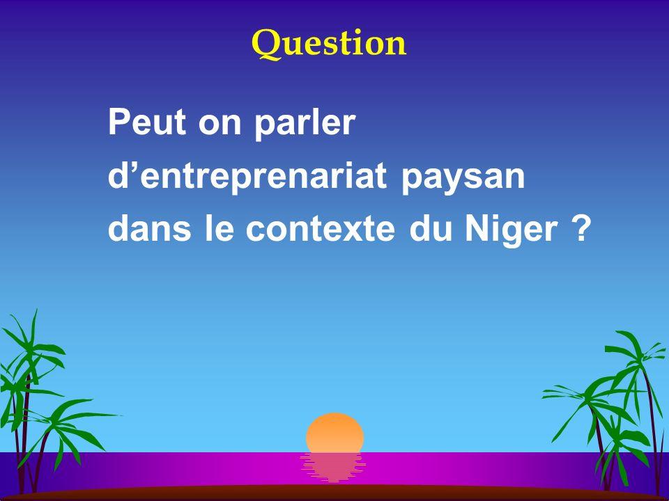 Question Peut on parler dentreprenariat paysan dans le contexte du Niger ?