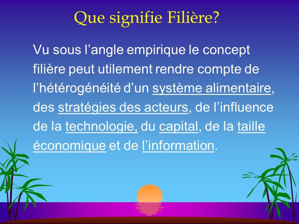 Que signifie Filière? Vu sous langle empirique le concept filière peut utilement rendre compte de lhétérogénéité dun système alimentaire, des stratégi