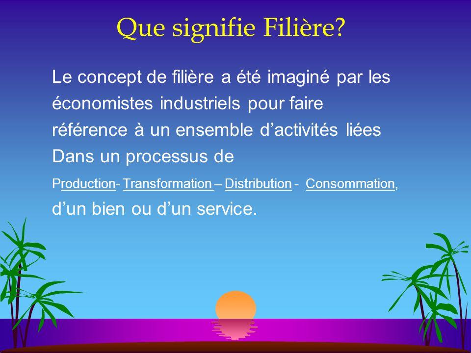 Que signifie Filière? Le concept de filière a été imaginé par les économistes industriels pour faire référence à un ensemble dactivités liées Dans un