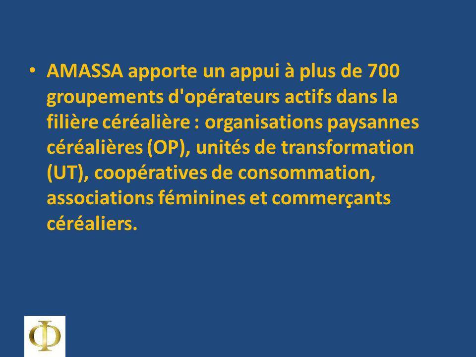 AMASSA apporte un appui à plus de 700 groupements d opérateurs actifs dans la filière céréalière : organisations paysannes céréalières (OP), unités de transformation (UT), coopératives de consommation, associations féminines et commerçants céréaliers.