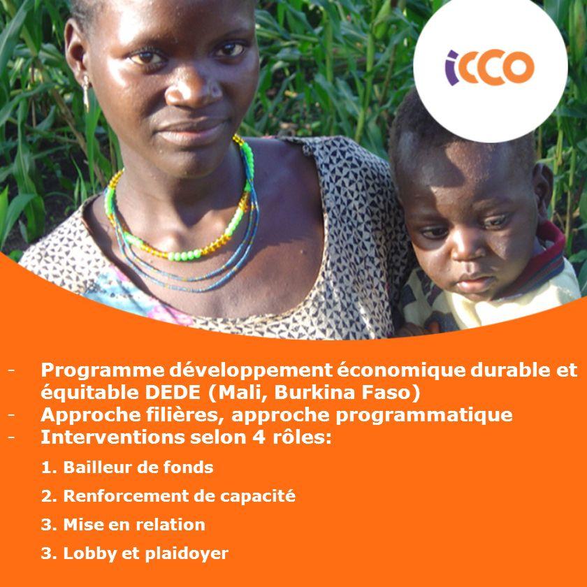 -Programme développement économique durable et équitable DEDE (Mali, Burkina Faso) -Approche filières, approche programmatique -Interventions selon 4