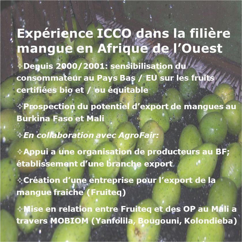 Expérience ICCO dans la filière mangue en Afrique de lOuest Depuis 2000/2001: sensibilisation du consommateur au Pays Bas / EU sur les fruits certifié