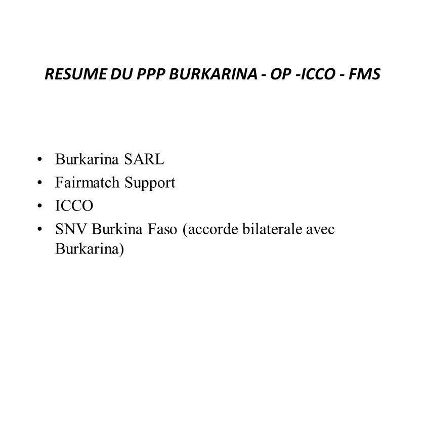 RESUME DU PPP BURKARINA - OP -ICCO - FMS Burkarina SARL Fairmatch Support ICCO SNV Burkina Faso (accorde bilaterale avec Burkarina)