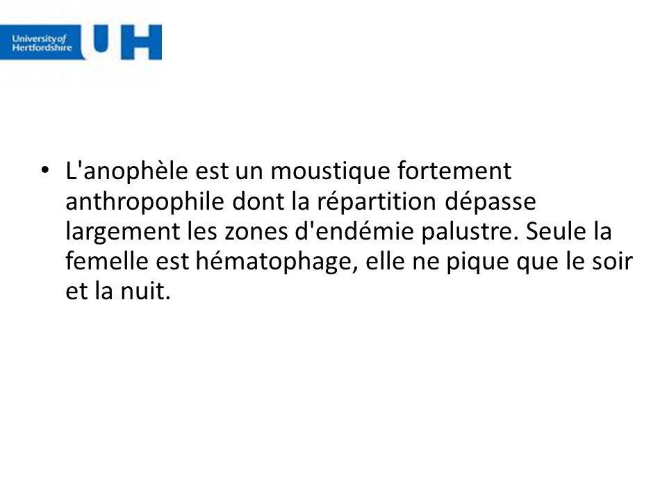 L'anophèle est un moustique fortement anthropophile dont la répartition dépasse largement les zones d'endémie palustre. Seule la femelle est hématopha