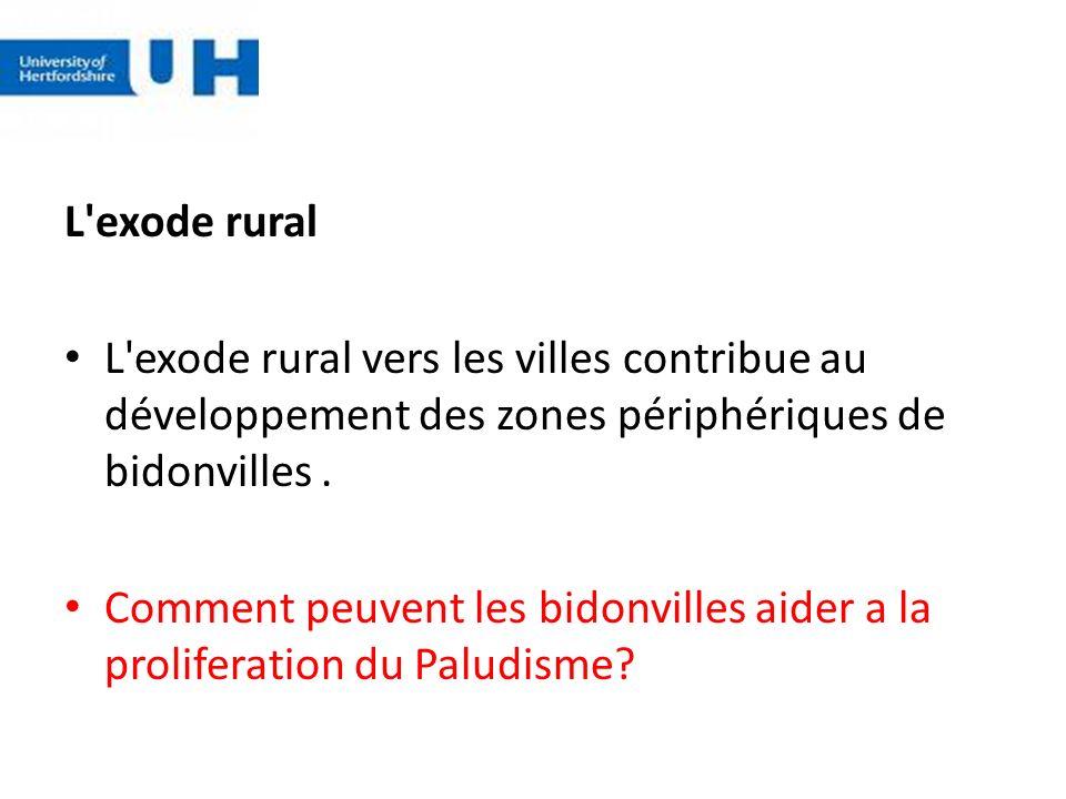 L'exode rural L'exode rural vers les villes contribue au développement des zones périphériques de bidonvilles. Comment peuvent les bidonvilles aider a