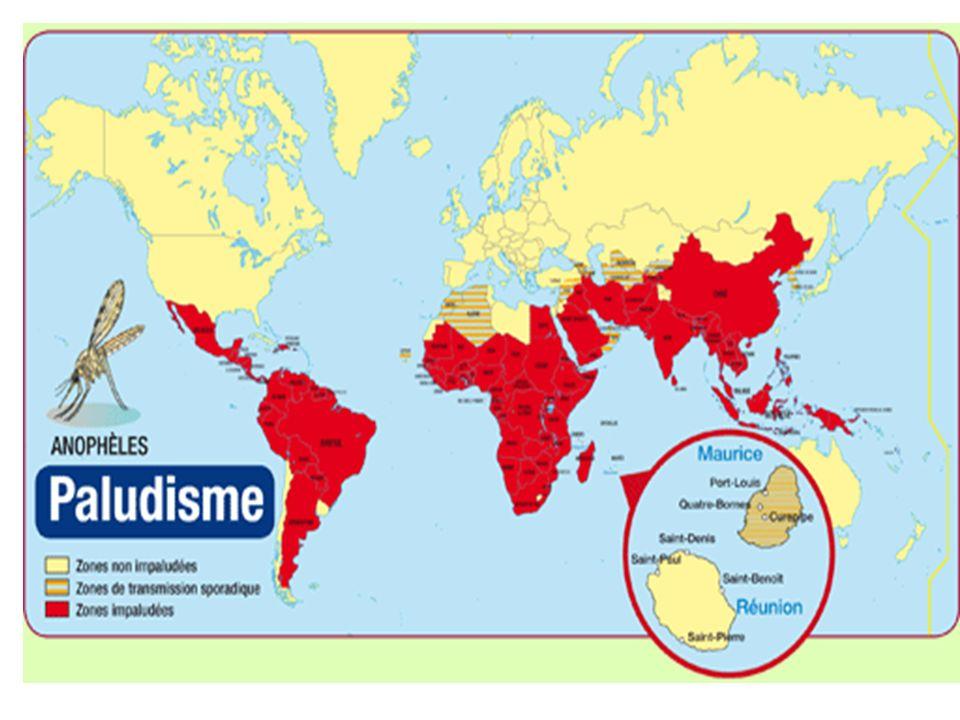 Au total, le paludisme est endémique dans 101 pays et territoires : 45 pays de la région africaine de l OMS, 21 de la région des Amériques, 4 de la région européenne, 14 de la région de la Méditerranée orientale, 8 de la région de l Asie du Sud-Est et 9 de la région du Pacifique occidental.