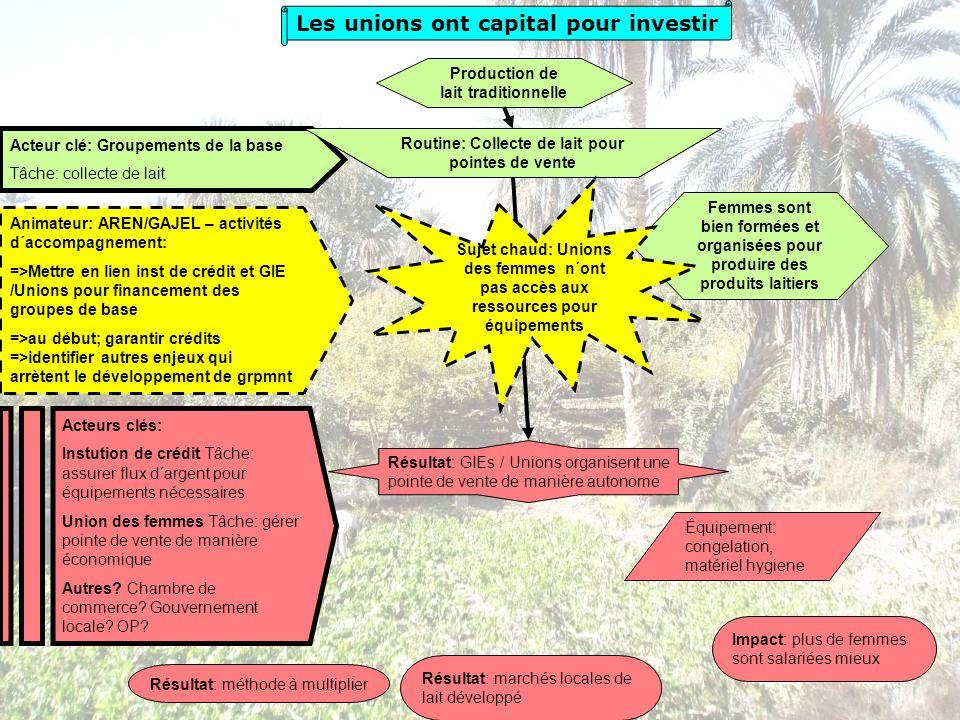 Animateur: AREN/GAJEL – activités d´accompagnement: =>Mettre en lien inst de crédit et GIE /Unions pour financement des groupes de base =>au début; ga