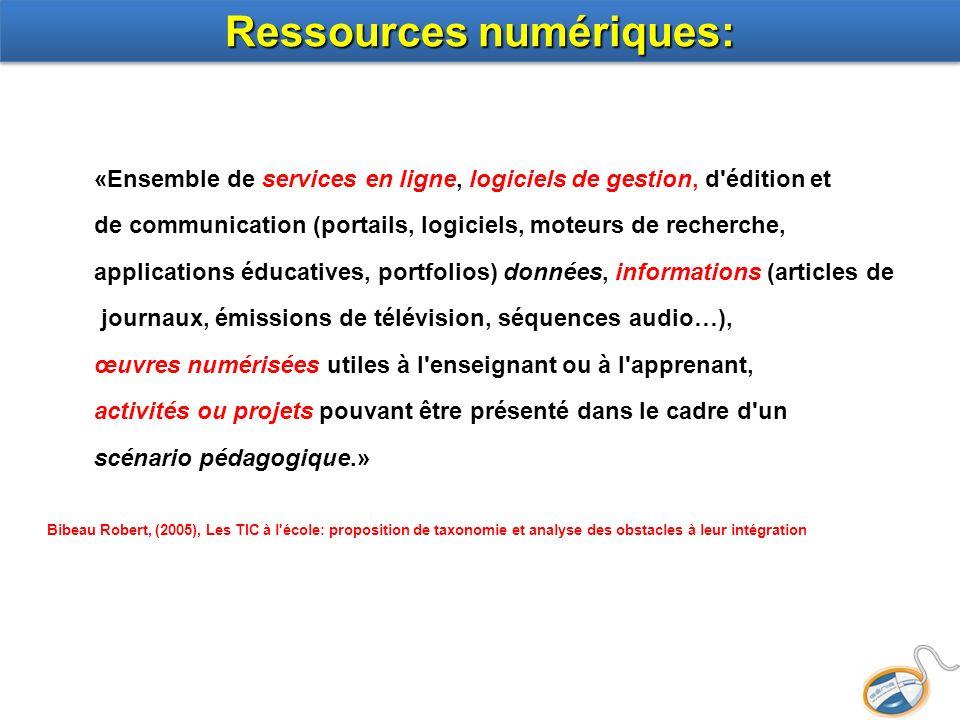 Ressources numériques: «Ensemble de services en ligne, logiciels de gestion, d'édition et de communication (portails, logiciels, moteurs de recherche,