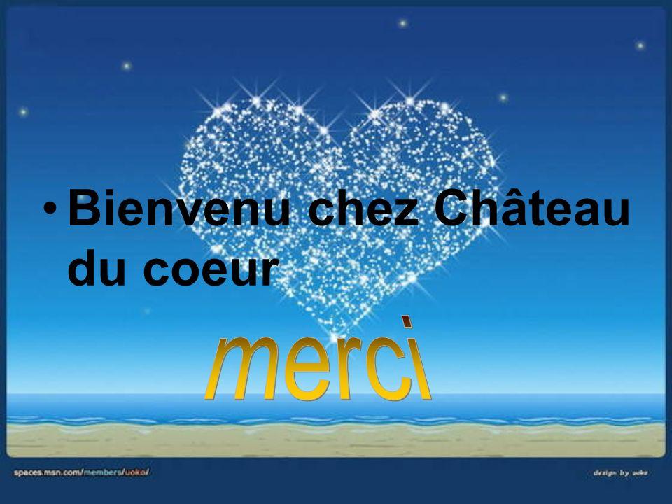 Bienvenu chez Château du coeur