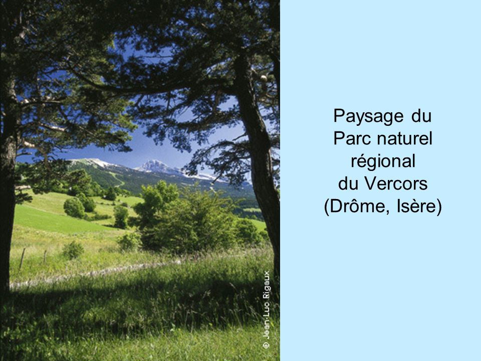 Paysage du Parc naturel régional du Vercors (Drôme, Isère)