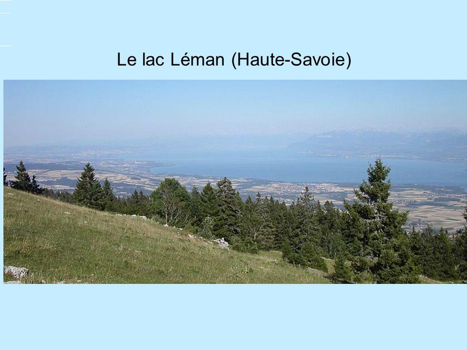 Le lac Léman (Haute-Savoie)