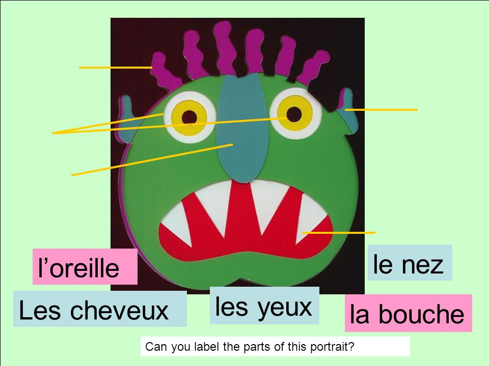 la moustache Les cheveux Can you label the parts of this portrait? les yeux le nez