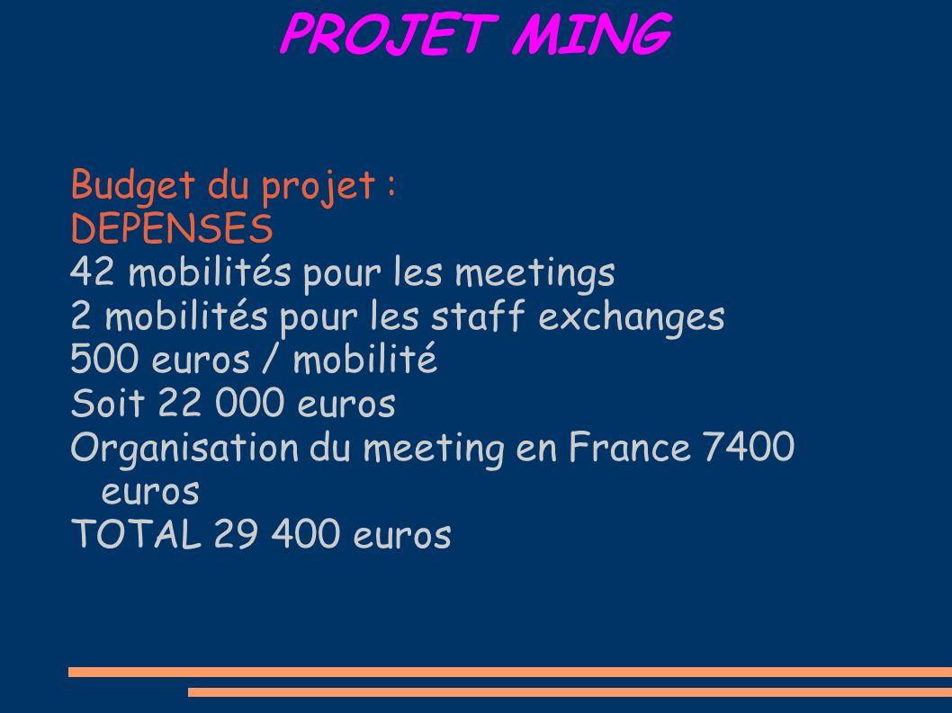 PROJET MING Budget du projet : DEPENSES 42 mobilités pour les meetings 2 mobilités pour les staff exchanges 500 euros / mobilité Soit 22 000 euros Organisation du meeting en France 7400 euros TOTAL 29 400 euros