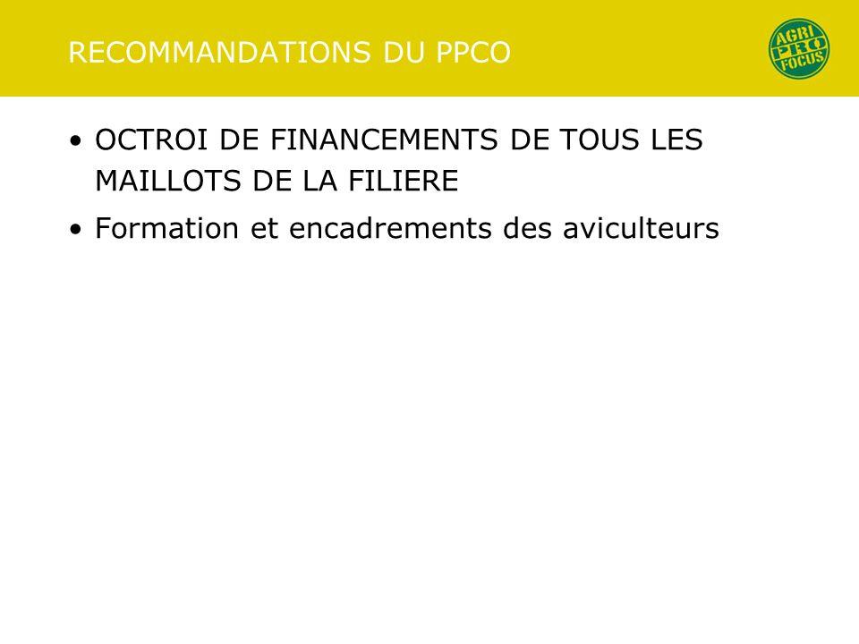 RECOMMANDATIONS DU PPCO OCTROI DE FINANCEMENTS DE TOUS LES MAILLOTS DE LA FILIERE Formation et encadrements des aviculteurs