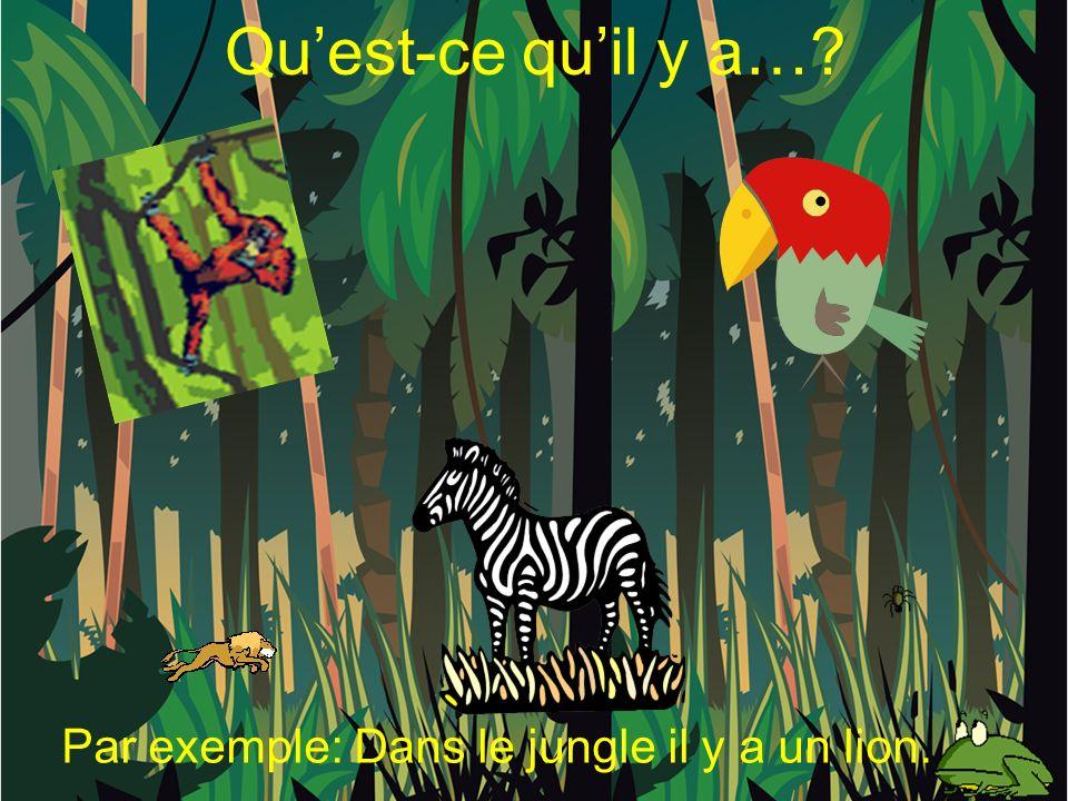 Quest-ce quil y a… Par exemple: Dans le jungle il y a un lion.