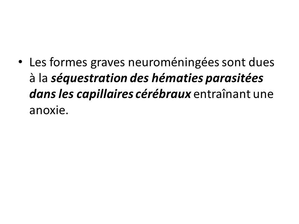 Les formes graves neuroméningées sont dues à la séquestration des hématies parasitées dans les capillaires cérébraux entraînant une anoxie.