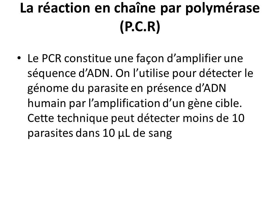 La réaction en chaîne par polymérase (P.C.R) Le PCR constitue une façon damplifier une séquence dADN. On lutilise pour détecter le génome du parasite