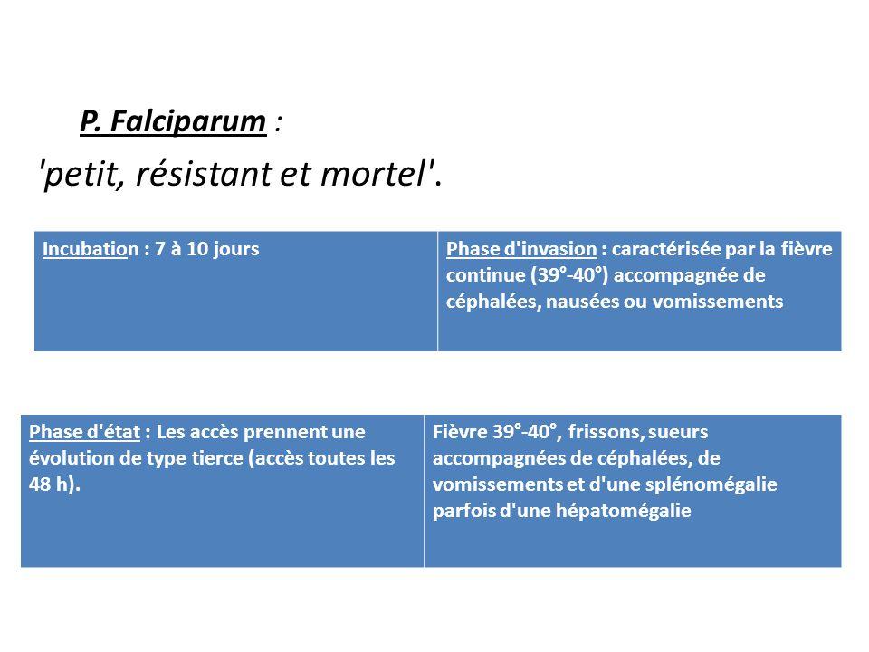 P. Falciparum : 'petit, résistant et mortel'. Incubation : 7 à 10 jours Phase d'invasion : caractérisée par la fièvre continue (39°-40°) accompagnée d