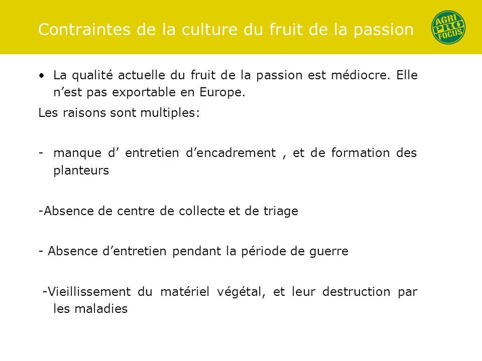 Contraintes de la culture du fruit de la passion La qualité actuelle du fruit de la passion est médiocre. Elle nest pas exportable en Europe. Les rais