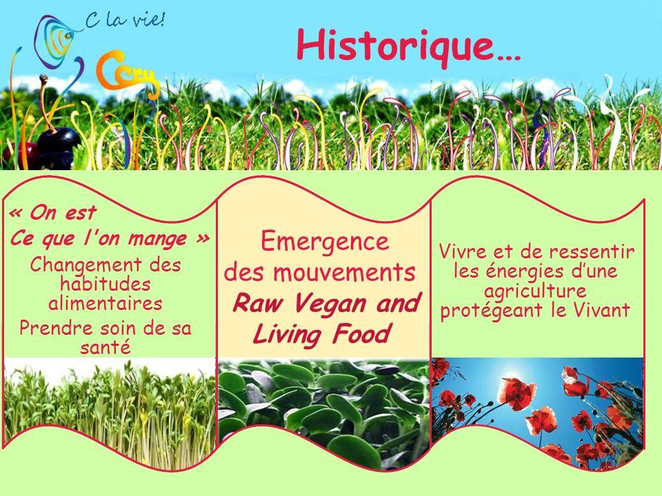 Historique… Vivre et de ressentir les énergies dune agriculture protégeant le Vivant Changement des habitudes alimentaires Prendre soin de sa santé Emergence des mouvements Raw Vegan and Living Food Ce que l on mange » « On est