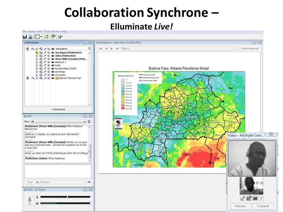 Collaboration Synchrone – Elluminate Live!