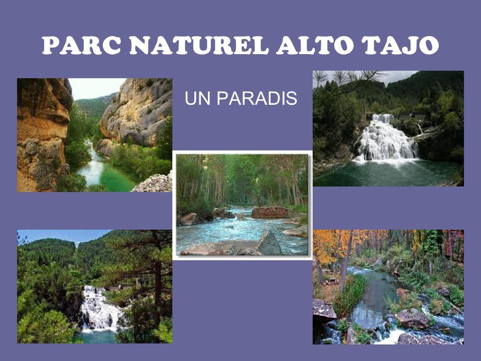 PARC NATUREL ALTO TAJO UN PARADIS