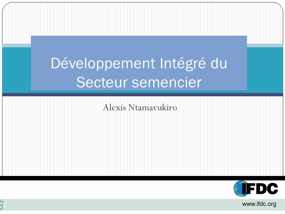 Alexis Ntamavukiro Développement Intégré du Secteur semencier
