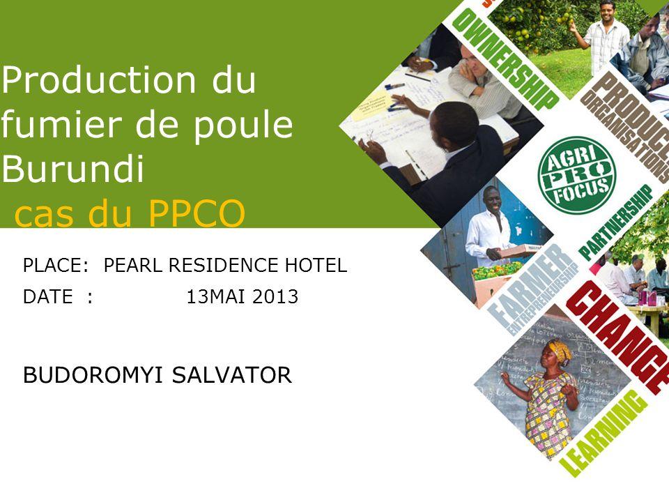 Production du fumier de poule Burundi cas du PPCO PLACE: PEARL RESIDENCE HOTEL DATE : 13MAI 2013 BUDOROMYI SALVATOR