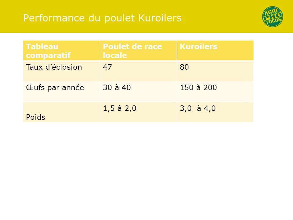 Performance du poulet Kuroilers Tableau comparatif Poulet de race locale Kuroilers Taux déclosion4780 Œufs par année30 à 40150 à 200 Poids 1,5 à 2,03,