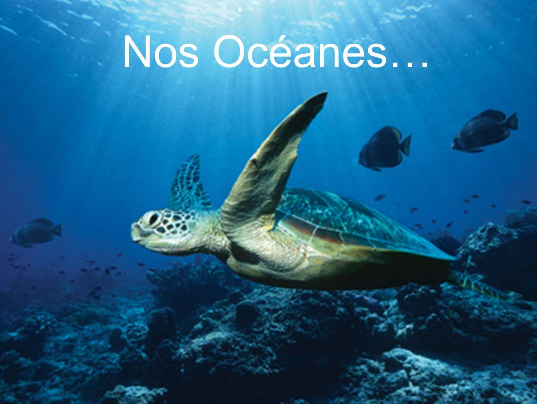 Nos Océanes…