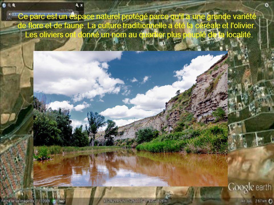 Ce parc est un espace naturel protégé parce qu il a une grande variété de flore et de faune.