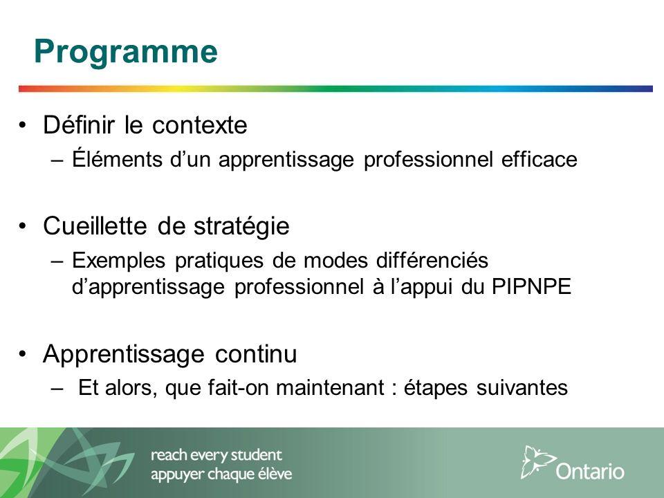 Définir le contexte –Éléments dun apprentissage professionnel efficace Cueillette de stratégie –Exemples pratiques de modes différenciés dapprentissage professionnel à lappui du PIPNPE Apprentissage continu – Et alors, que fait-on maintenant : étapes suivantes Programme