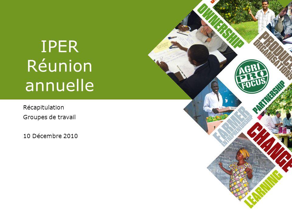 IPER Réunion annuelle Récapitulation Groupes de travail 10 Décembre 2010