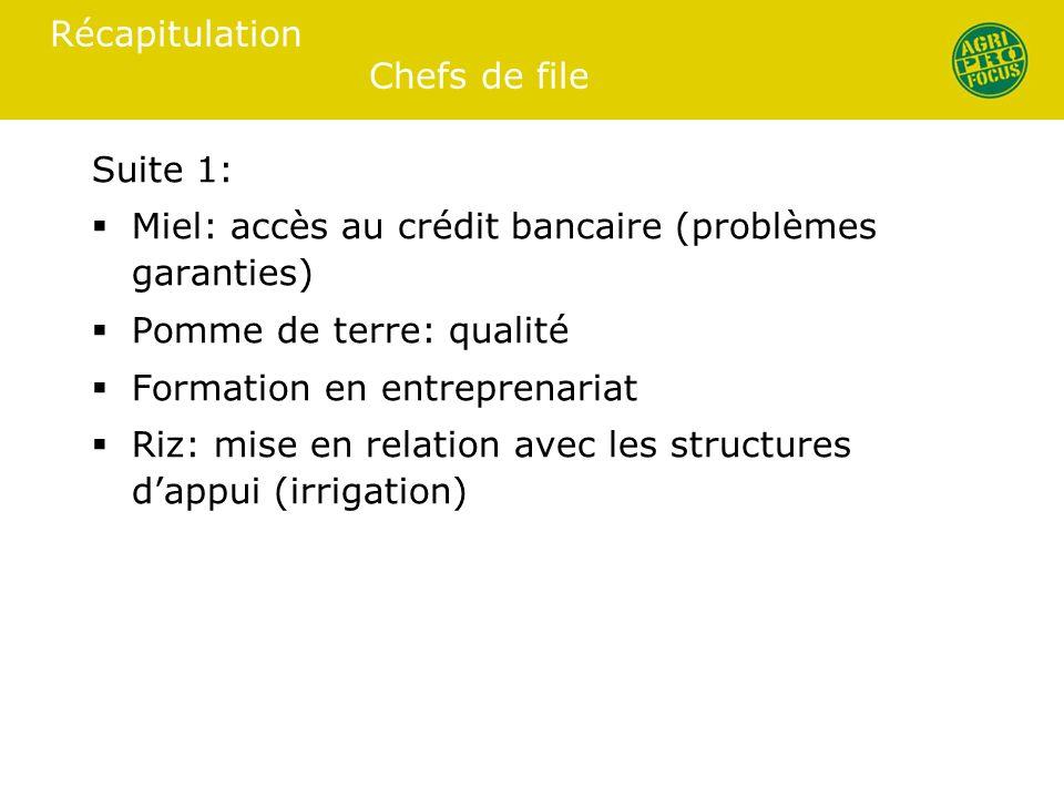 Récapitulation Chefs de file Suite 1: Miel: accès au crédit bancaire (problèmes garanties) Pomme de terre: qualité Formation en entreprenariat Riz: mise en relation avec les structures dappui (irrigation)