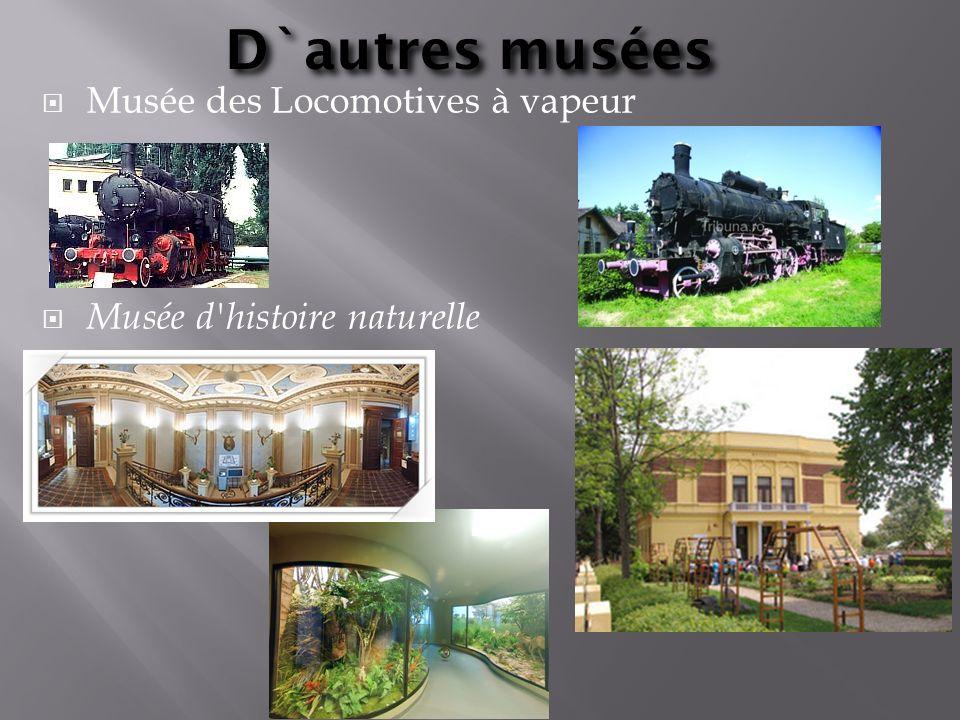 D`autres musées Musée des Locomotives à vapeur Musée d'histoire naturelle