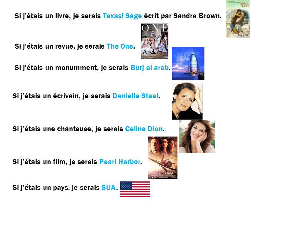 Si jétais un livre, je serais Texas. Sage écrit par Sandra Brown.