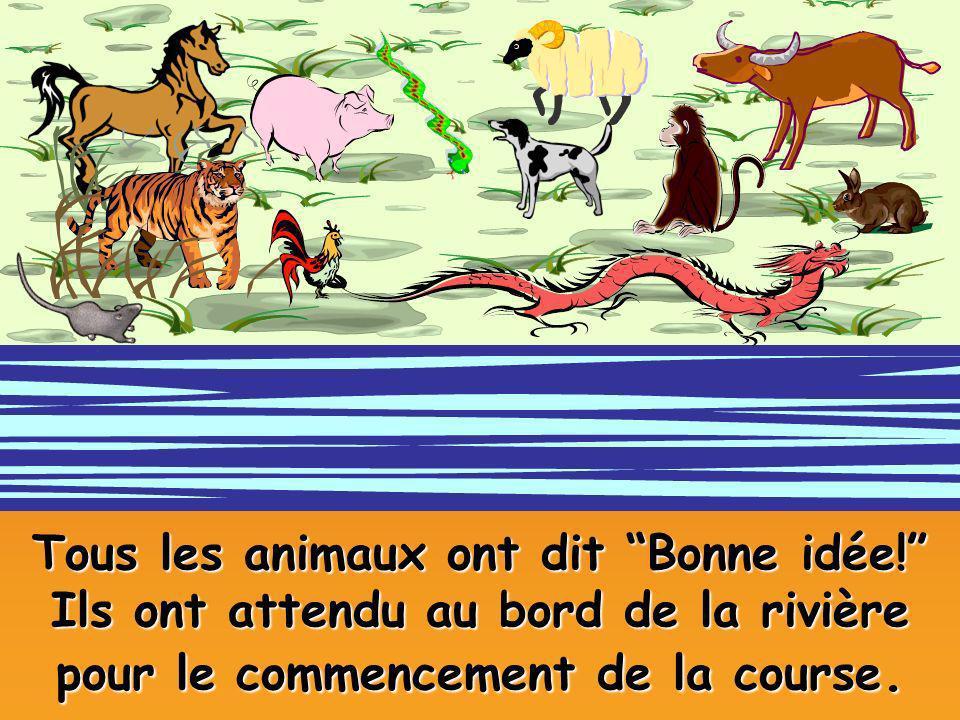 Tous les animaux ont dit Bonne idée! Ils ont attendu au bord de la rivière pour le commencement de la course.