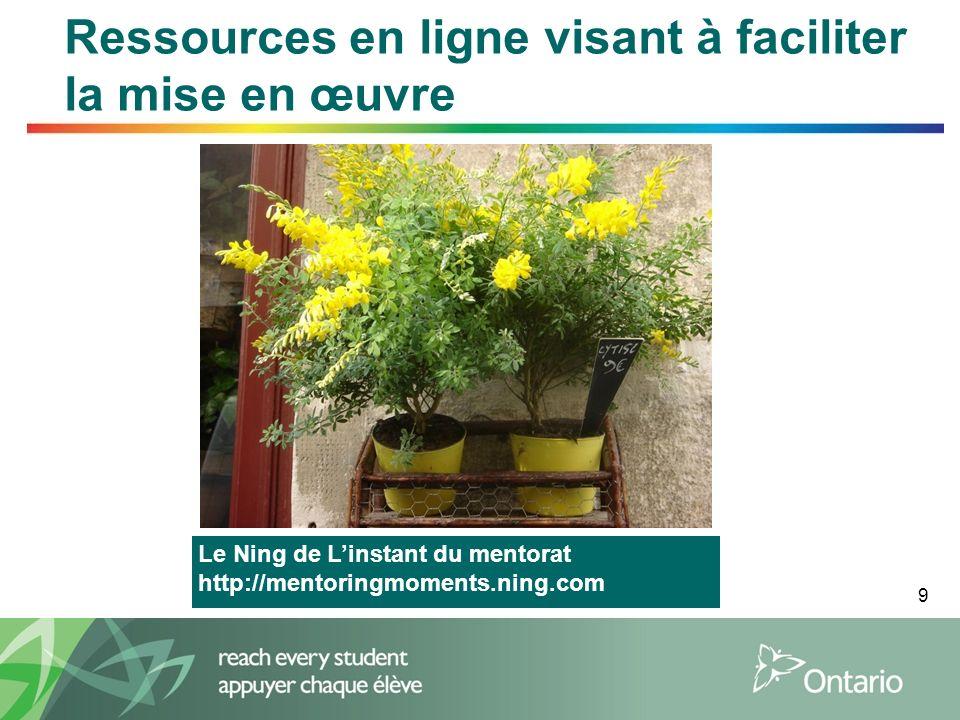 9 Ressources en ligne visant à faciliter la mise en œuvre Le Ning de Linstant du mentorat http://mentoringmoments.ning.com